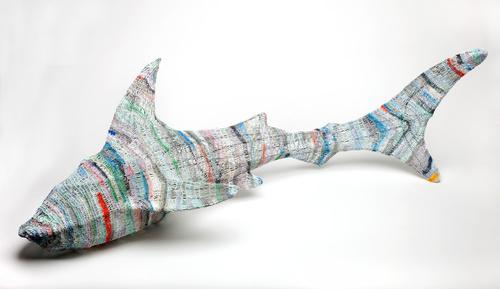 <span>Ann McMahon</span>Blind shark 2010